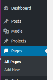 Choose the page to add Socket to in WordPress.